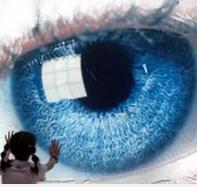 2016国际盲人节手抄报大全1.0.0 最新版