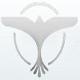 灰鸽子远程控制软件2.2 绿色版
