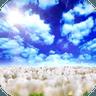蓝天白云动态壁纸1.0.7 iPhone版
