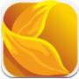 金�趸ㄐ糯�端手机版1.0.0 官方下载