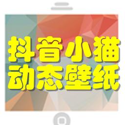 抖音小猫动态壁纸app1.0 安卓手机版