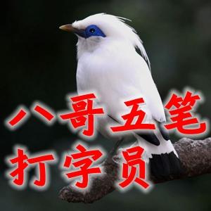 八哥五�P打字�TV2018正式版