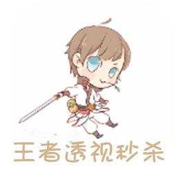 王者荣耀最新版透视秒杀appv9.6.5.3安卓版