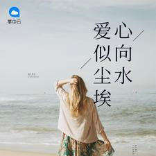 爱似尘埃心向水【TXT/最新章节】