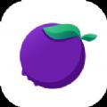 蓝莓Radio1.0.0 安卓版
