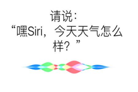 苹果手机siri怎么打开   苹果手机Siri声音设置方法介绍