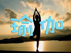 瑜伽预览图