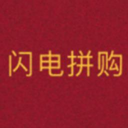 闪电拼购(拼团购物平台)appv1.0.1安卓版