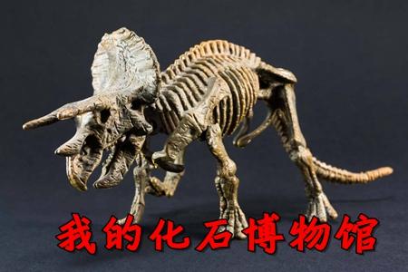我的化石博物�^�o限金��荣�破解版