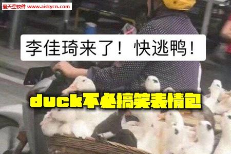 duck不必搞笑表情包