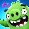 Angry Birds ARv1.0.0最新版