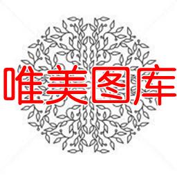 唯美图库app(壁纸图片大全)1.0 安卓版