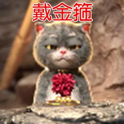 一只猫戴金箍的动态视频壁纸【无水印/动图】