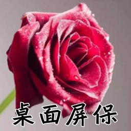 飘零玫瑰花屏保壁纸【动图/免费】