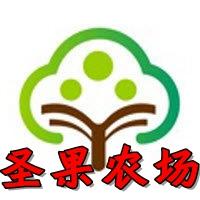 圣果农场模拟植树赚钱appv1.0.0安卓版