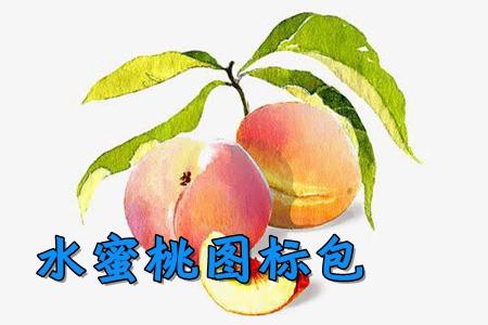 水蜜桃�D�税�app