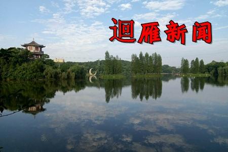 �雁新闻雁峰融媒体中心app