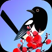 喜鹊快讯app最新安卓版v1.0.0