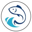 变音神鱼app悬浮窗版